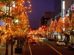 Winter Special Vibrant Kyushu!|Features|Kyushu Tourism Information [ Japan ]